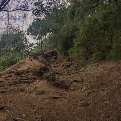 der Weg zum Pololu Valley